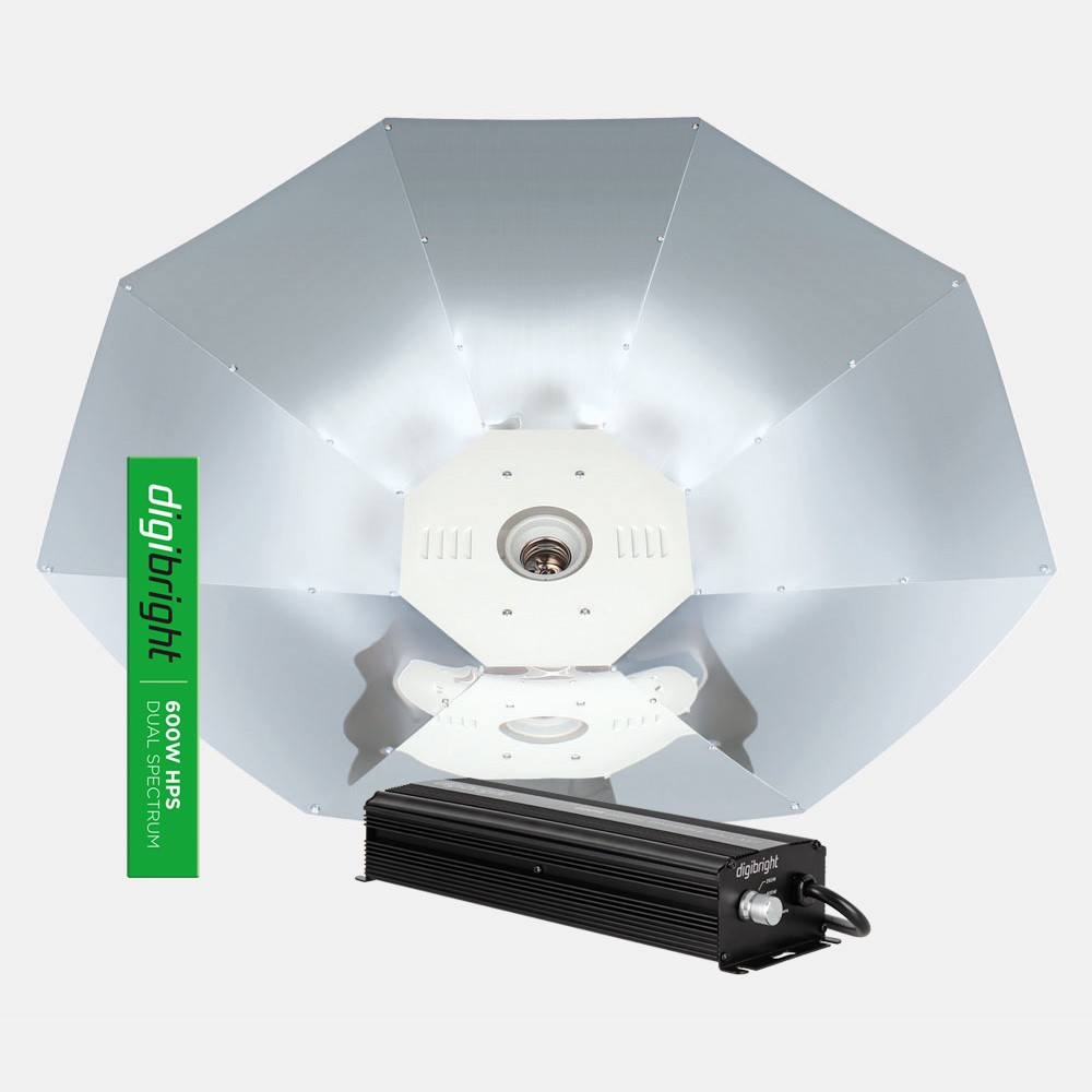 Digibright Digital 600W Parabolic Kit